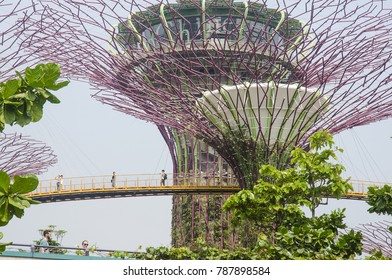 SINGAPORE, MARCH 13: Gardens by the Bay on March 13, 2017 in Singapore. Gardens by the Bay is a nature park and popular tourist destination spanning 101 hectares, adjacent to the Marina Reservoir.