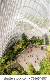 SINGAPORE - MARCH 13: interior of Cloud Forest at Gardens by the Bay on March 13,2017 in Singapore. Cloud Forest contains the world's tallest indoor waterfall.