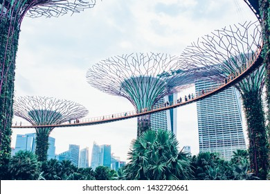 SINGAPORE, SINGAPORE - MARCH 2019: Supertree Grove & OCBC Skyway at Garden by the Bay