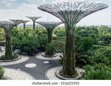 Singapore - March 22, 2019: Gardens by the Bay, Supertree Grove. Group of supertrees towering over green park under blue sky with white cloudscape. Foodtruck under foliage.