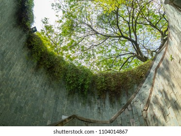 Singapore - March 3, 2018: Fort canning park attraction, ant's eyes view from underground tunnel to big green trees and spiral staircase above, popular place for pre-wedding photograph