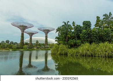 SINGAPORE - MAY 12: Gardens by the Bay on Mar 12, 2014 in Singapore. Gardens by the Bay was crowned World Building of the Year at the World Architecture Festival 2012
