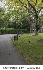 SINGAPORE, SINGAPORE - MAY 22, 2014: One of the many walkways in the Singapore Botanic Gardens lined with benches and trees