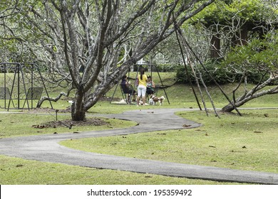 SINGAPORE, SINGAPORE - MAY 22, 2014: Visitors siting on a swing in the Singapore Botanic Gardens