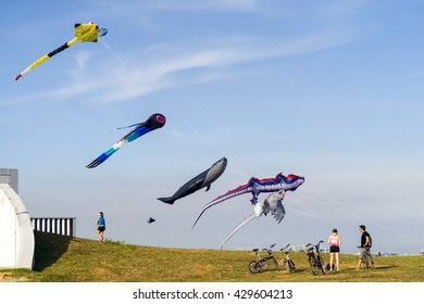 SINGAPORE, MAY 29: Cyclists admire large flying multi colored kites at East Coast Park on May 29, 2016.
