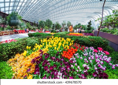 Singapore - May 4 : Flower dome, The largest glass greenhouse in the world, Display of flowers and plants from the Mediterranean and semi-arid regions at Gardens by the Bay. Singapore in May 4,2016
