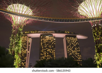 SINGAPORE - NOVEMBER 17: scenic night illumination of artificial trees and Marina Bay Sands Hotel by night in Singapore, Singapore on November 17, 2014.