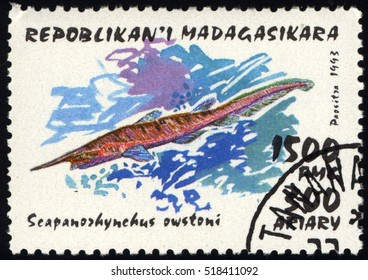 SINGAPORE ?? NOVEMBER 19, 2016: A stamp printed in Malagasy shows Goblin Shark (Scapanorhynchus owstoni), circa 1993.