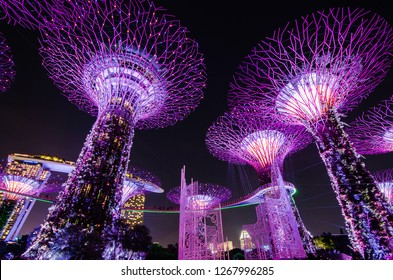 SINGAPORE - NOVEMBER 25, 2018: Night view of Supertrees at Gardens by the Bay. The tree-like structures are fitted with environmental technologies that mimic the ecological function of trees.