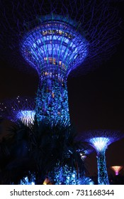 SINGAPORE – October 10, 2017 :  Supertrees Grove at Garden by the park at night with a blue lights. Over 162,900 plants planted on the 18 Supertrees.