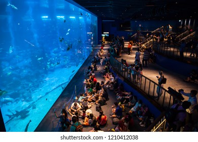 Singapore - October 7, 2018 : Many tourists seeing under sea view at S.E.A. Aquarium, Singapore.