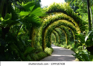 Singapore - September 12, 2018 - Flower arches at the National Orchid Garden at Singapore Botanic Gardens