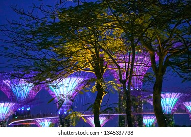 SINGAPORE - SEPTEMBER 2, 2018: Gardens by the Bay - famous tourist destination of Singapore.