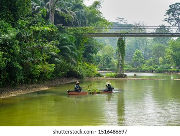 Singapore - September 22, 2019:  Gardener man worker cleaning the water pond river in the botanical garden of Singapore, near the National Orchid Garden entrance and Tanglin Gate
