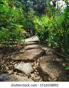 Singapore - September 22, 2019:  Stone pathway walk path in the botanical garden of Singapore, near the National Orchid Garden and Tanglin Gate