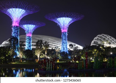 SINGAPORE - SEPTEMBER 8, 2018 - Supertrees at night in front of the Flower Dome and Cloud Forest at Gardens by the Bay