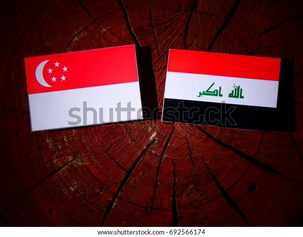 Singaporean flag with Iraqi flag on a tree stump isolated