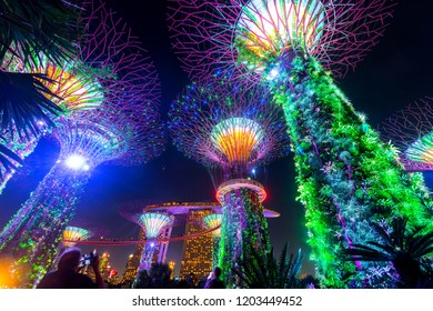 Singapore,Asia,25 JULY 2018;Colorful Landscape of Singapore. The Supertree at Gardens by the Bay,Singapore,ASIA