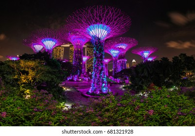 SINGAPORE-MARCH 26 2017: Night view of The Supertree Grove at Gardens by the Bay