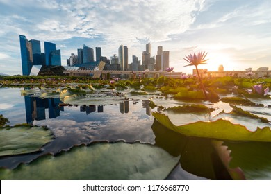 Singapore-May 20 2018: View of the luxurious financial district of Singapore where big companies and banks have their headquarters for the ASEAN region.