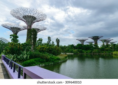 Singapore,May,30th,2015:Supper trees at Gardens by the bay and  buildings landmarks of Singapore.