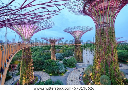 SINGAPORE-OCTOBER 30: View from the walkway on The Supertree Grove at Gardens by the Bay on October 30, 2016 in Singapore. Near Bayfront MRT Station in Singapore.
