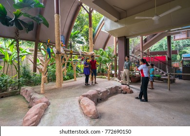 Singapore,Singapore - December 09, 2017 : People is taking photo with Parrots at Jurong Bird Park, Singapore