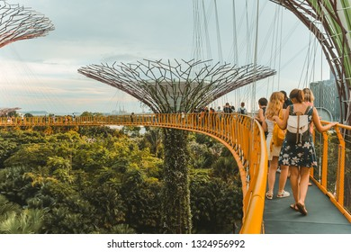 Singapoure Gardens by the bay August 26 2018
