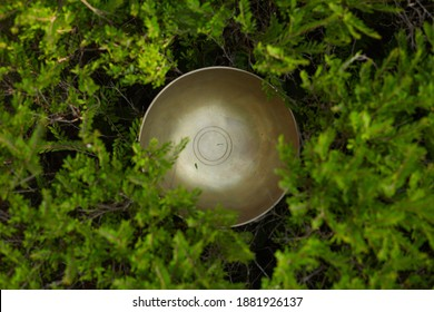 singing bowl nature background,sound theraphy