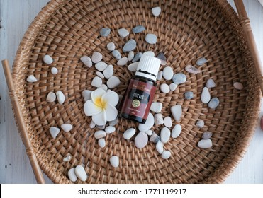 Singkawang, Indonesia - May 4 2020: Thieves oil. Variety of Young Living Essential Oil. Selective focus.