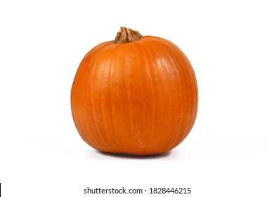 Single 'Baby Bear' Halloween pumpkin isolated on white background