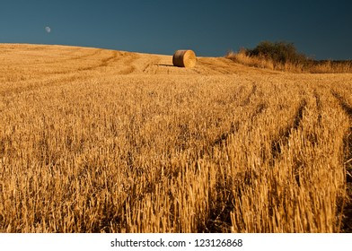 A single bale of grain in Tuscany,Italy