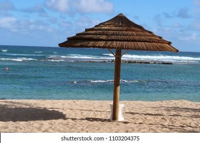 Single Beach Umbrella