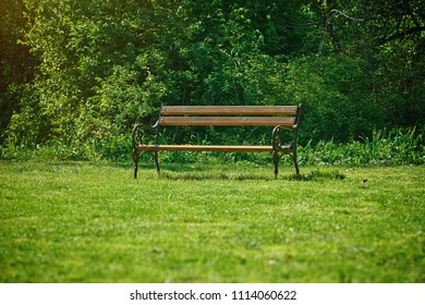 Single Bench in the Park