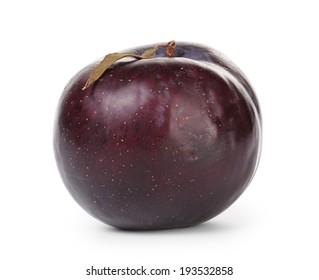 single black plum, isolated on white background