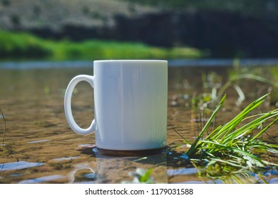 A single blank white coffee cup in the riverbanks of the green river on a nice bright sunny morning.