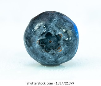 single blueberry macro close up wet with water droplets on white background, focus stacked macro photography
