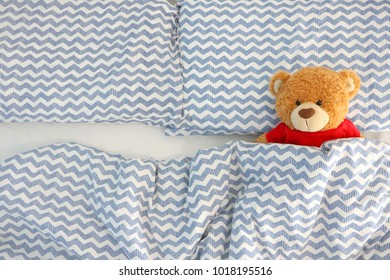 single brown bear doll wear red shirt sleeping on the bed have space on the left side. Concept waiting for someone to sleep with him