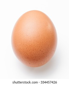 Single brown chicken egg on white background
