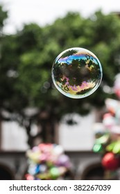 A Single Bubble Floating in the Park in Cuernavaca, Mexico