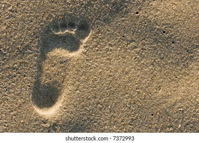 Single children footprint in the sand