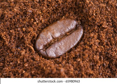 Single Coffee Bean macro on ground coffee background. Soft focus.