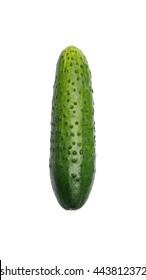 Single cucumber on white background. Object on white