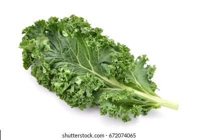 Single curly kale leaf isolated on white background