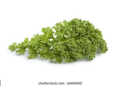 Single curly kale leaf on white background
