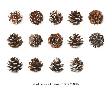 Single decorational pine cone covered with artificial snow, isolated over the white background, set of multiple different foreshortenings