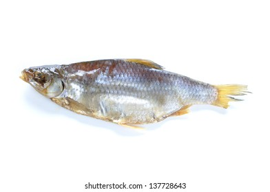 Single dry Russian vobla fish on white background