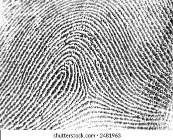 Single fingerprint - black on white - background version