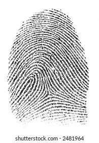 Single fingerprint - black on white