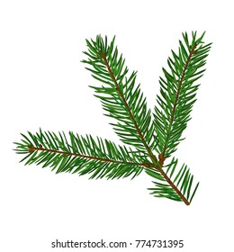 Single fir tree branch isolated on white background. Christmas, new year symbol. Art raster illustration